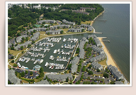 Chesapeake Harbour